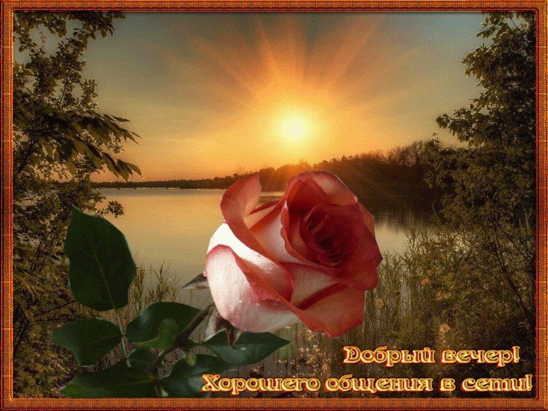 Добрый вечер картинки красивые и анимированные