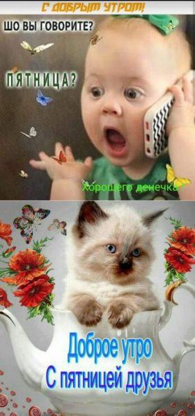 С добрым утром картинки: прикольные и смешные