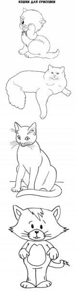 Картинки для срисовки котики