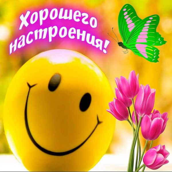 Удачного дня и хорошего настроения картинки