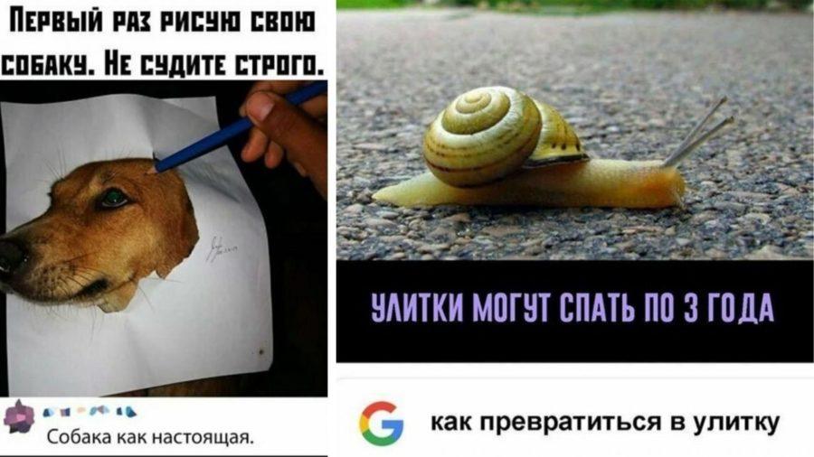 Прикольные картинки про работу