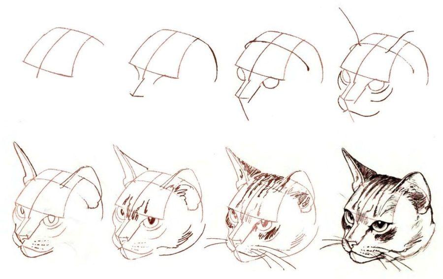 Клевые картинки для срисовки