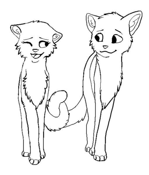 Картинки Коты-воители для срисовки