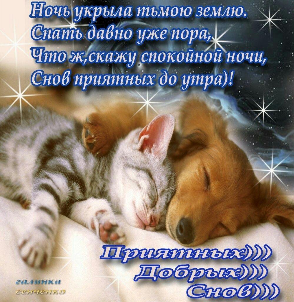 Картинки спокойной ночи, сладких снов