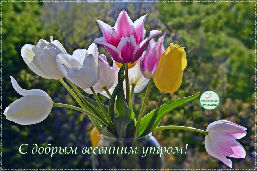 Доброе утро весна – Красивые весенние картинки