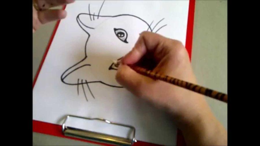Рисунки карандашом для срисовки легкие для начинающих