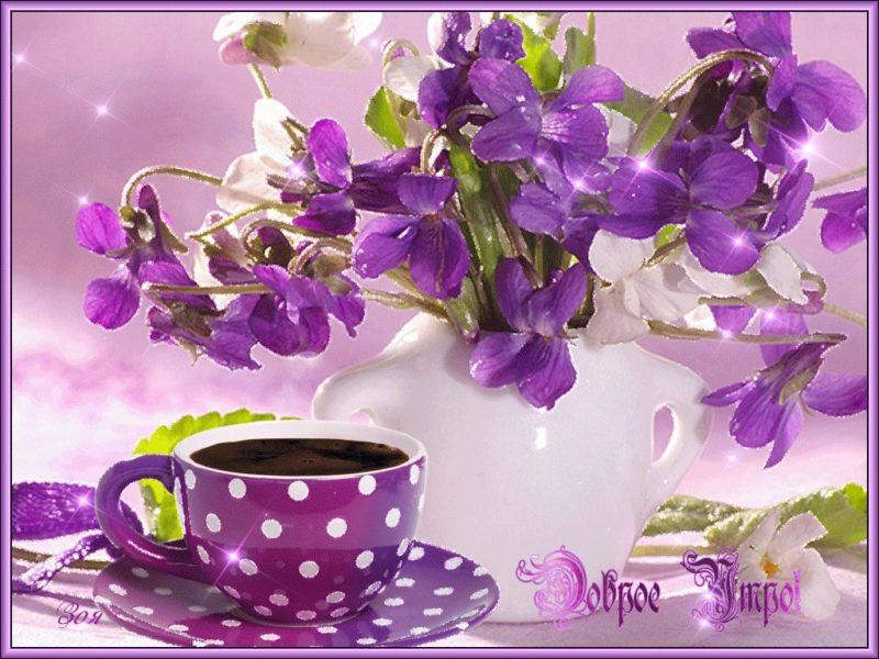 Картинки с добрым утром и хорошего дня