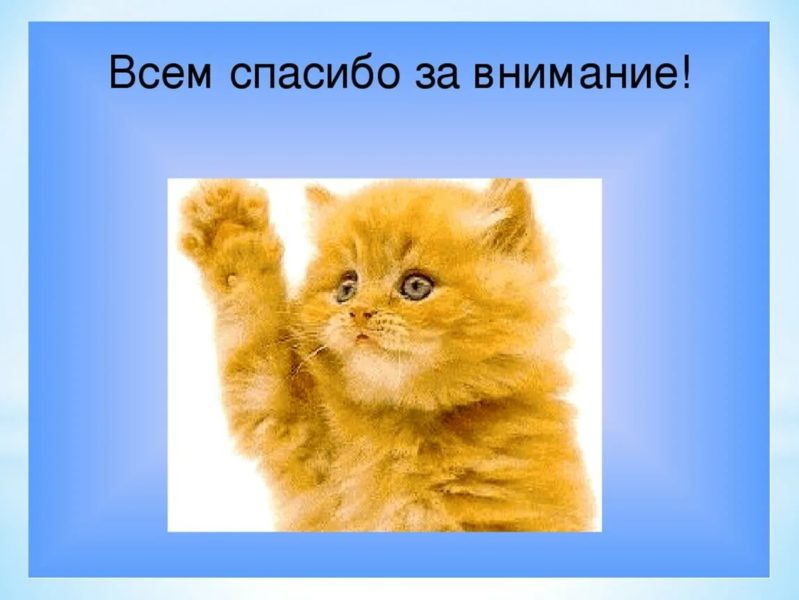 Спасибо за внимание! 165 картинок для презентации